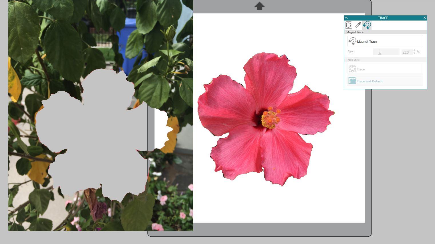 Silhouette Design Studio tutorials, silhouette tutorial, silhouette cameo tutorial for beginners, how to use silhouette studio, studio
