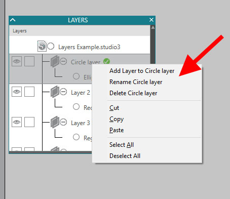 Layers right click options