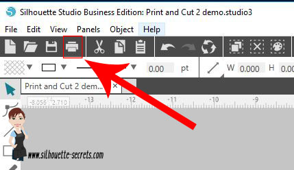 print icon copy