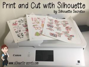 silhouettesecrets_header copy