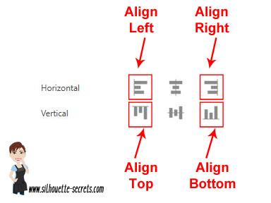 Align options copy
