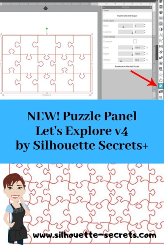 Puzzle Panel 2.jpg