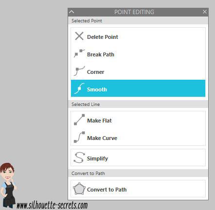Edit Points Panel copy