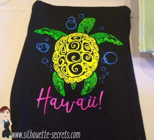 SilSecrets_HTV Shirt copy