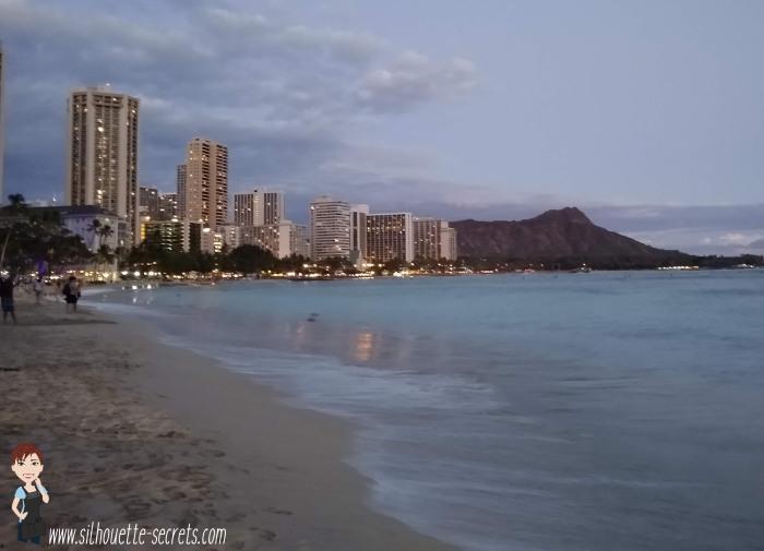 Waikiki shore copy