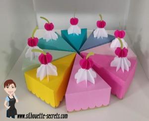 Cake boxes copy