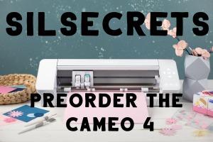 Cameo 4- header copy