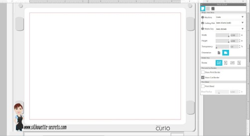 Curio mat copy.jpg