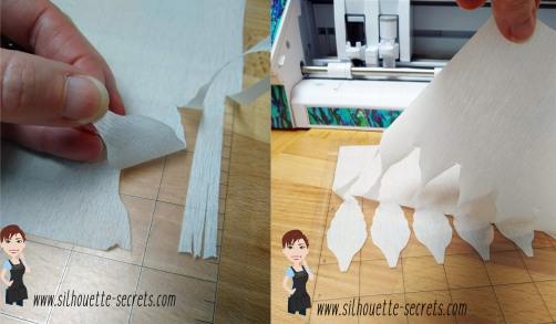 Crepe Paper Cut copy