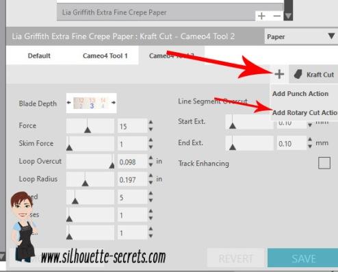 Custom settings4 copy