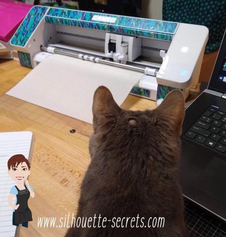 Cutting help copy