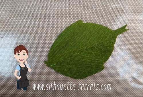 Leaf grain copy