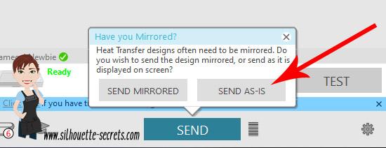 Send As Is copy.jpg