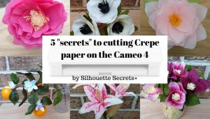 5 secrets Header photo